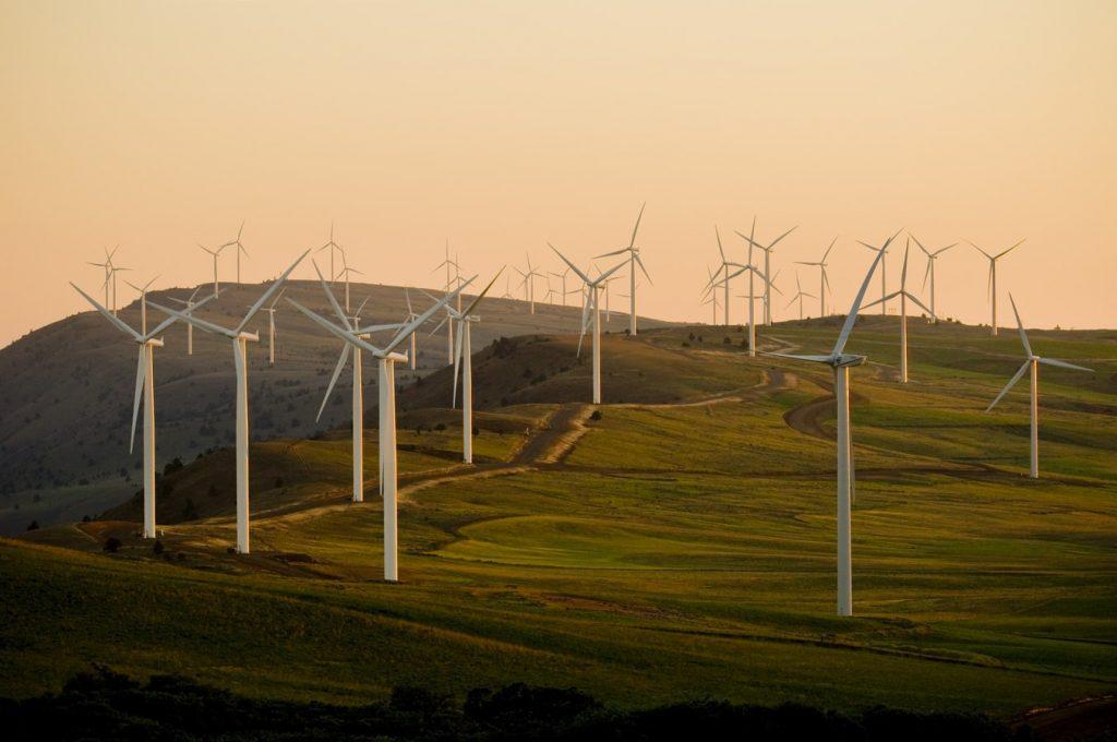 Champ d'éoliennes qui produisent des énergies renouvelables